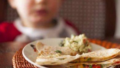 Photo of Lunchbox Friendly Quesadilla