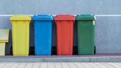 Photo of 10 Things We Can All Recycle